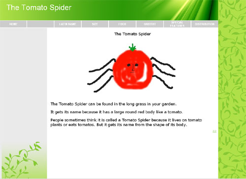 spider001