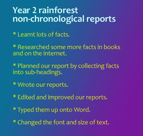 rainforest001